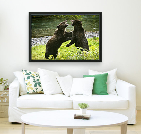 Two Grizzly Bears Fighting  Art