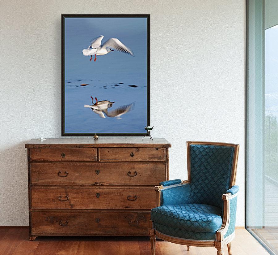 Bird Landing  Art