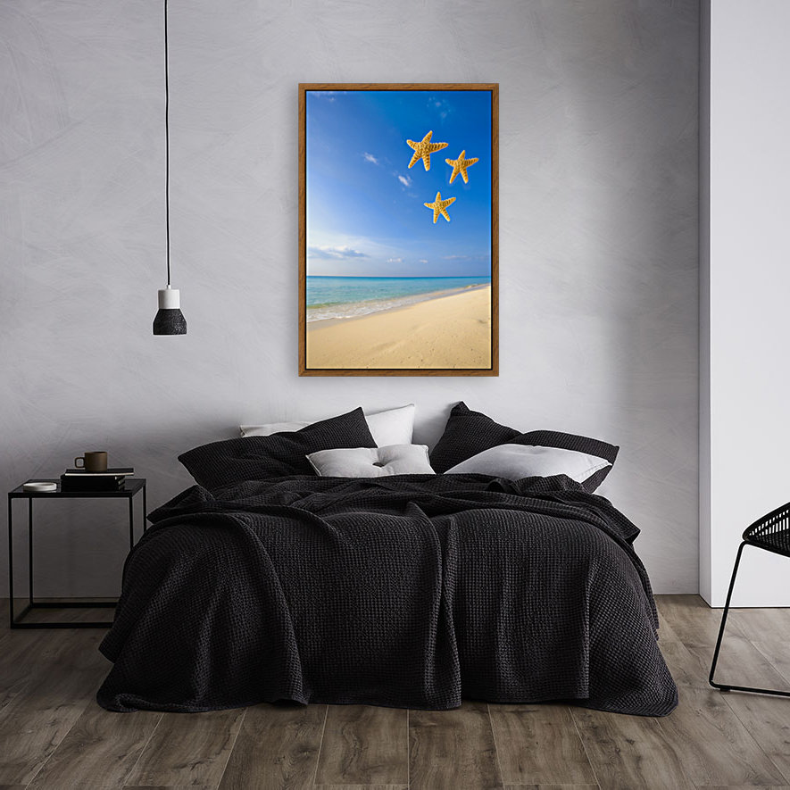 Starfish Falling In Front Of The Ocean  Art