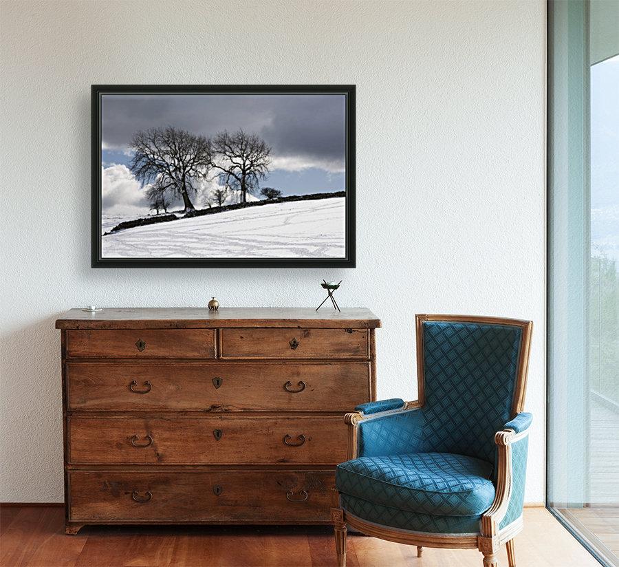 Snowy Field, Weardale, County Durham, England  Art