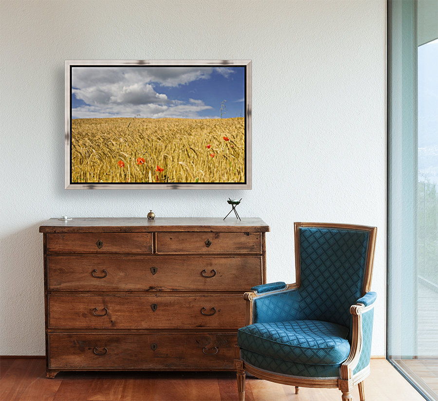 Wild Poppies In Wheat Field, North Yorkshire, England  Art