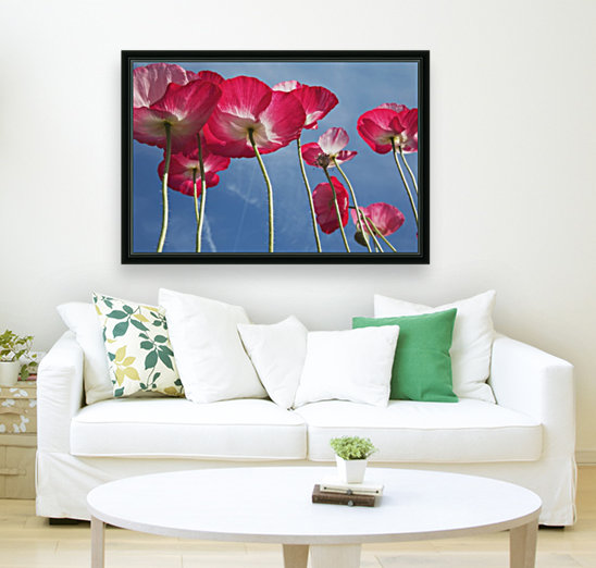 Pink Flowers with Floating Frame