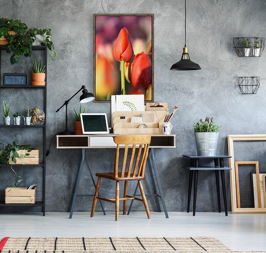 Woodburn, Oregon, United States Of America; Close Up Of A Closed Tulip  Art