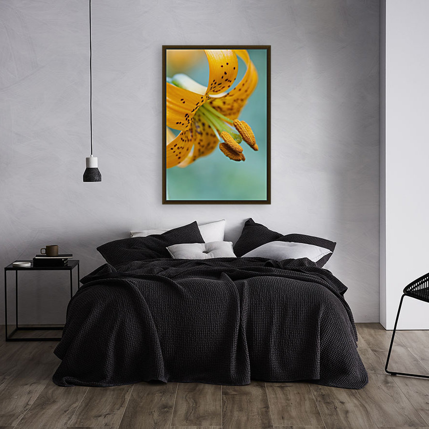 Oregon, United States Of America; A Lily On Mount Hood  Art