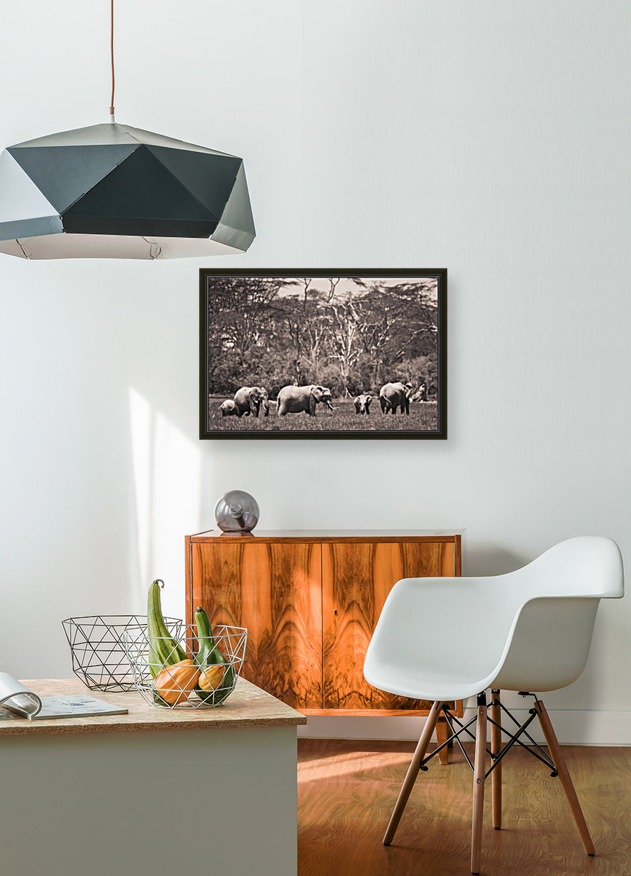 A Group Of Elephants; Kenya - PacificStock Canvas