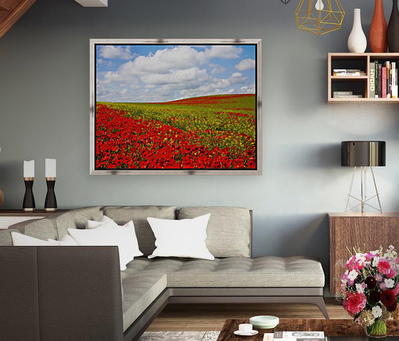 An Abundance Of Red Poppies In A Field; Corbridge, Northumberland, England  Art