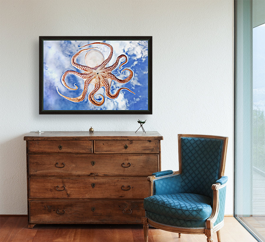 An octopus with blue sky and cloud in the background  Art