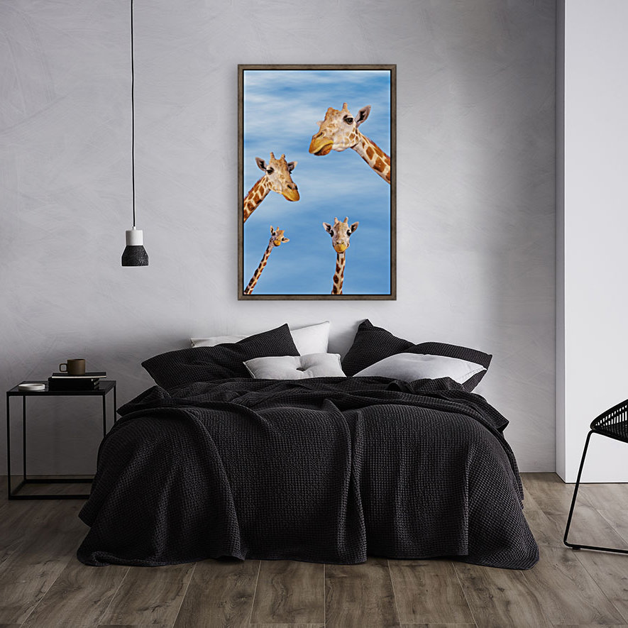 Four giraffes looking downward;Africa with Floating Frame