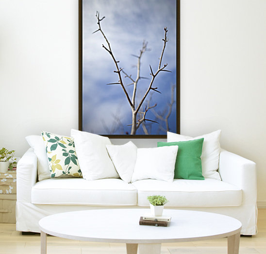 Tree with buds in springtime; Milton, Ontario, Canada  Art