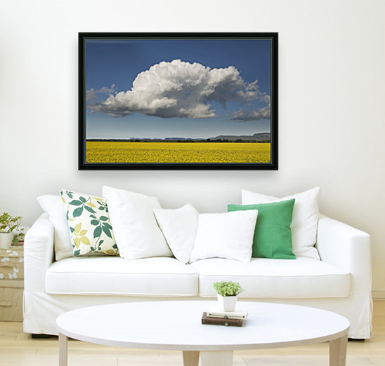 Canola field with blue sky and cloud; Thunder Bay, Ontario, Canada  Art