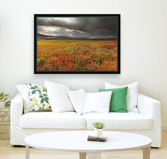 A storm passes over the bright colors of autumn in Denali National Park & Preserve, Alaska.  Art