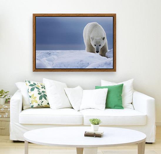 Polar bear (Ursus Maritimus); Churchill, Manitoba, Canada  Art