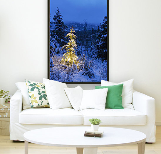A festive Mountain Hemlock evergreen tree strung with white lights and covered in snow in a wintery landscape, Kenai Mountains; Moose Pass, Alaska, United States of America  Art