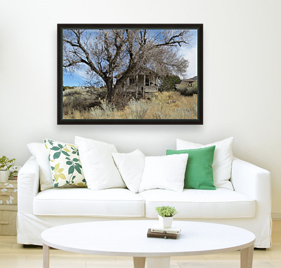 Turquoise Trail - This Old House 1VP  Art