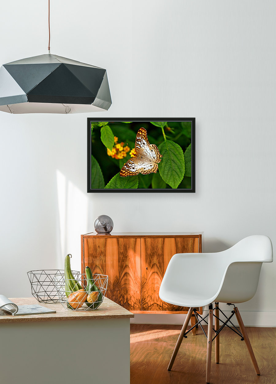 BPS-0015 with Floating Frame