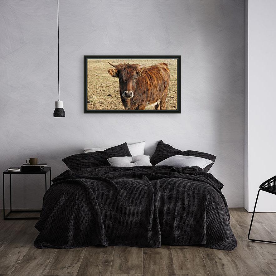 Bull in the Spring VP1  Art