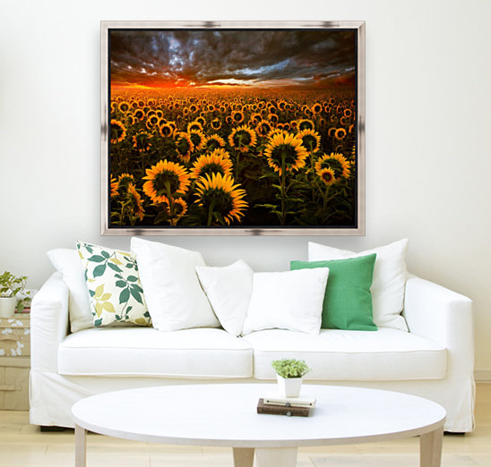 Sunflower Field with Floating Frame