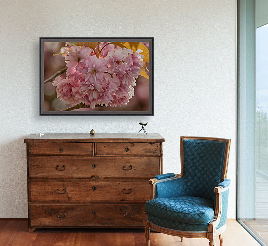 Apple Blossoms  Art