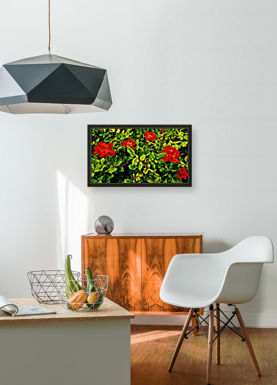 roselooking  Art