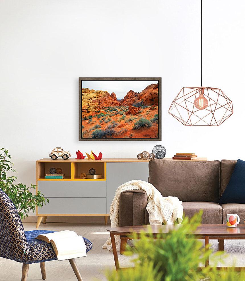 Desert Colors  Art