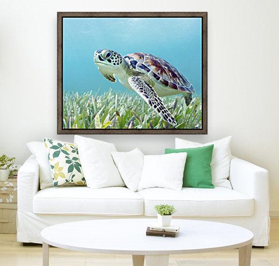 Hawaii, Green Sea Turtle (Chelonia Mydas) An Endangered Species.  Art