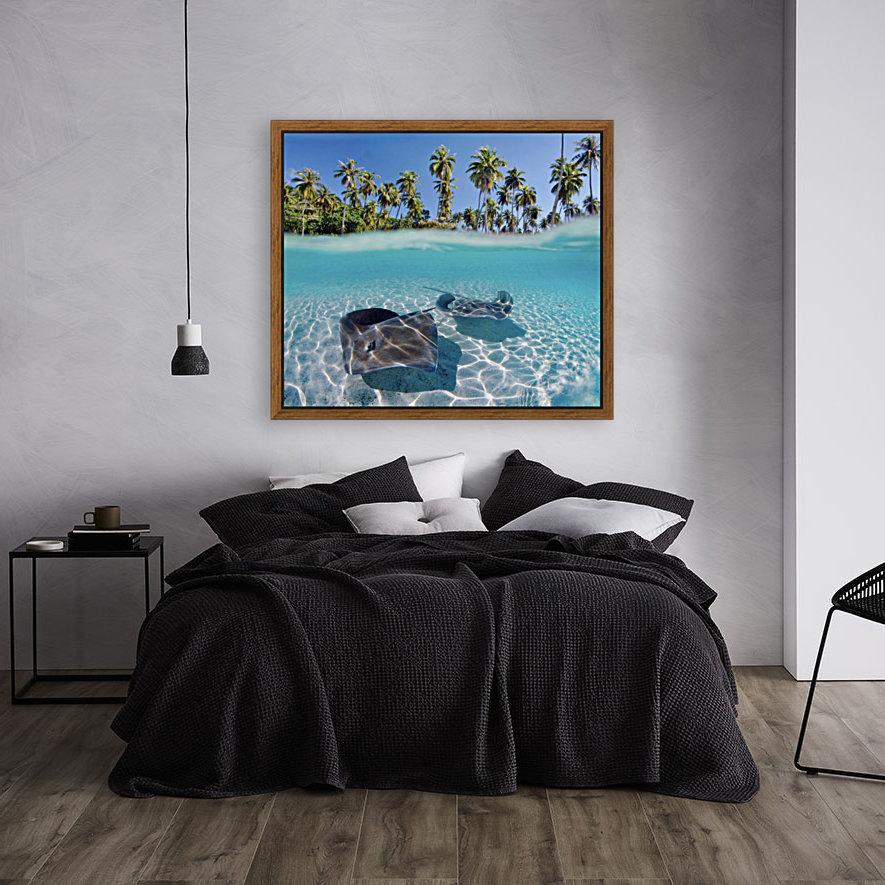 French Polynesia, Tahiti, Moorea, Two Stingray In Beautiful Turquoise Water.  Art