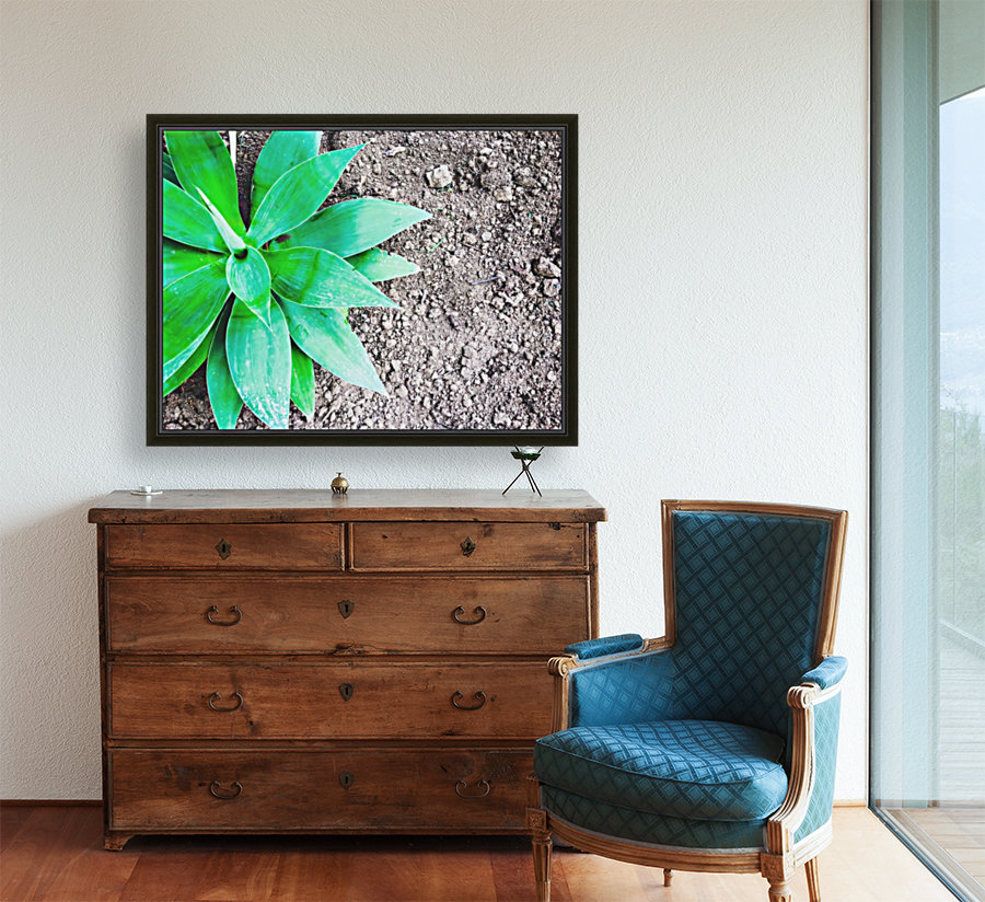 green leaf plant with sand background  Art