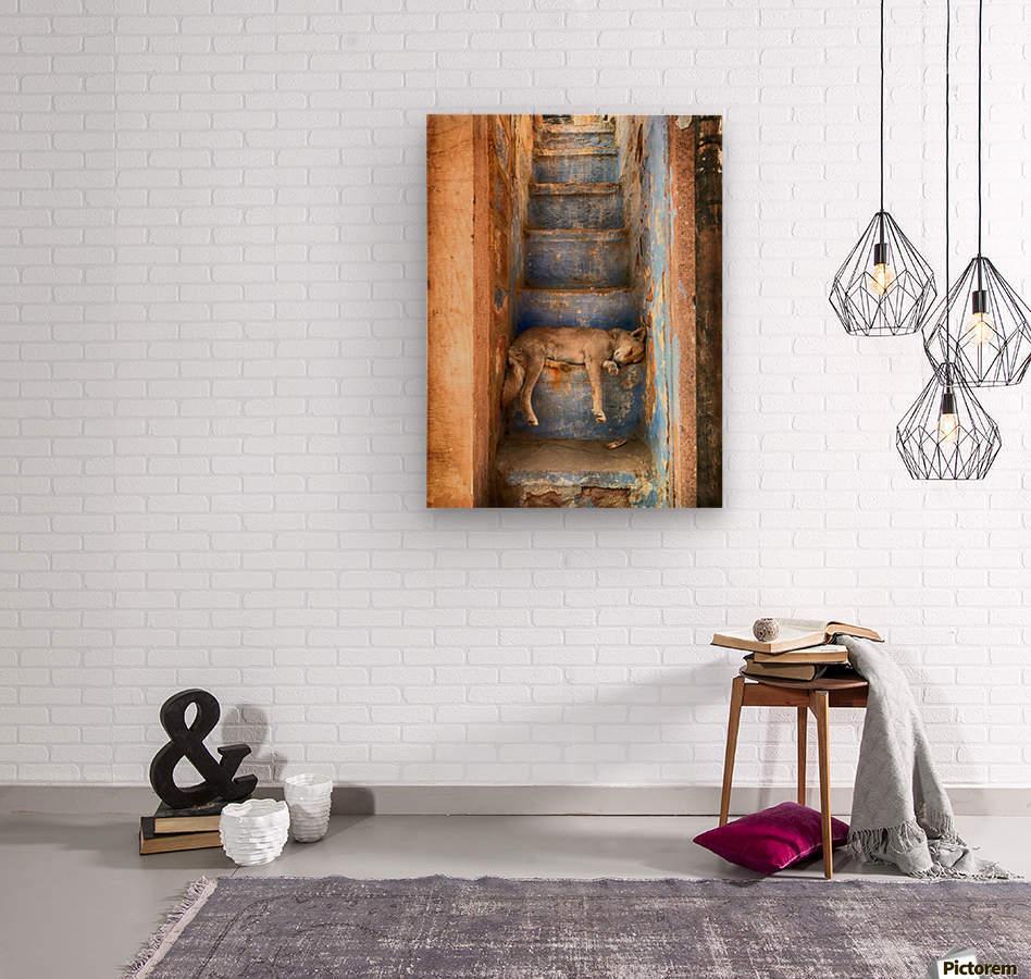 Nap time  Wood print