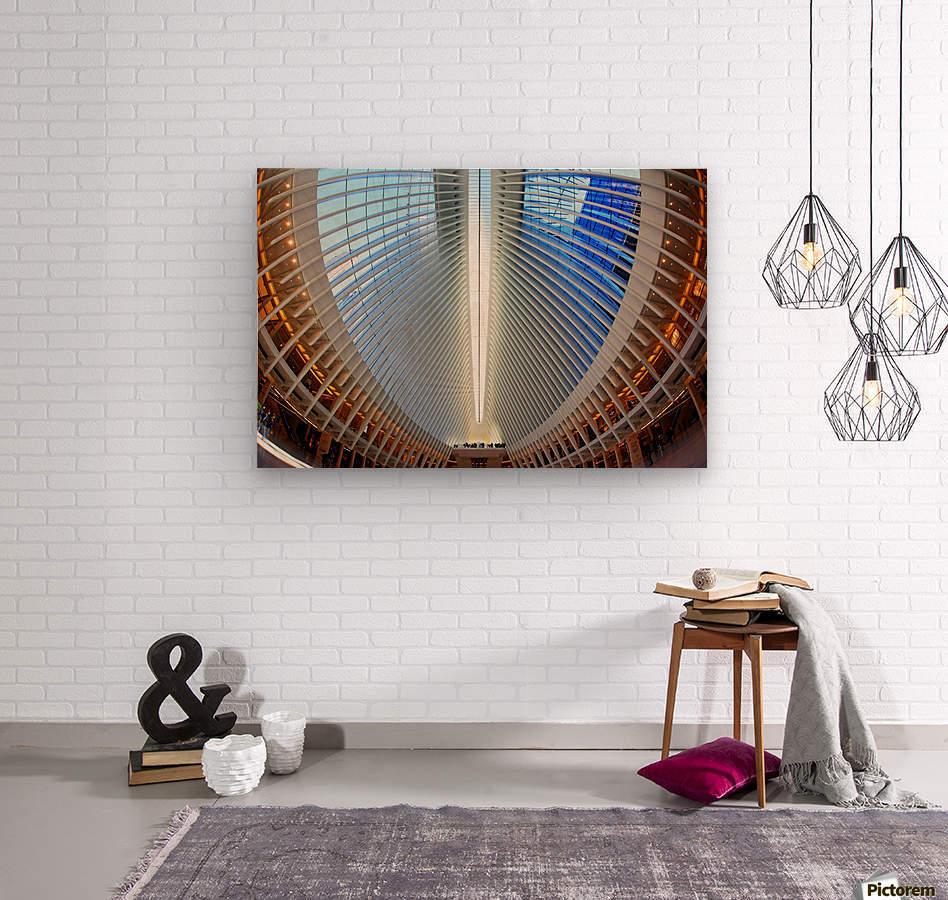 Oculus  Wood print