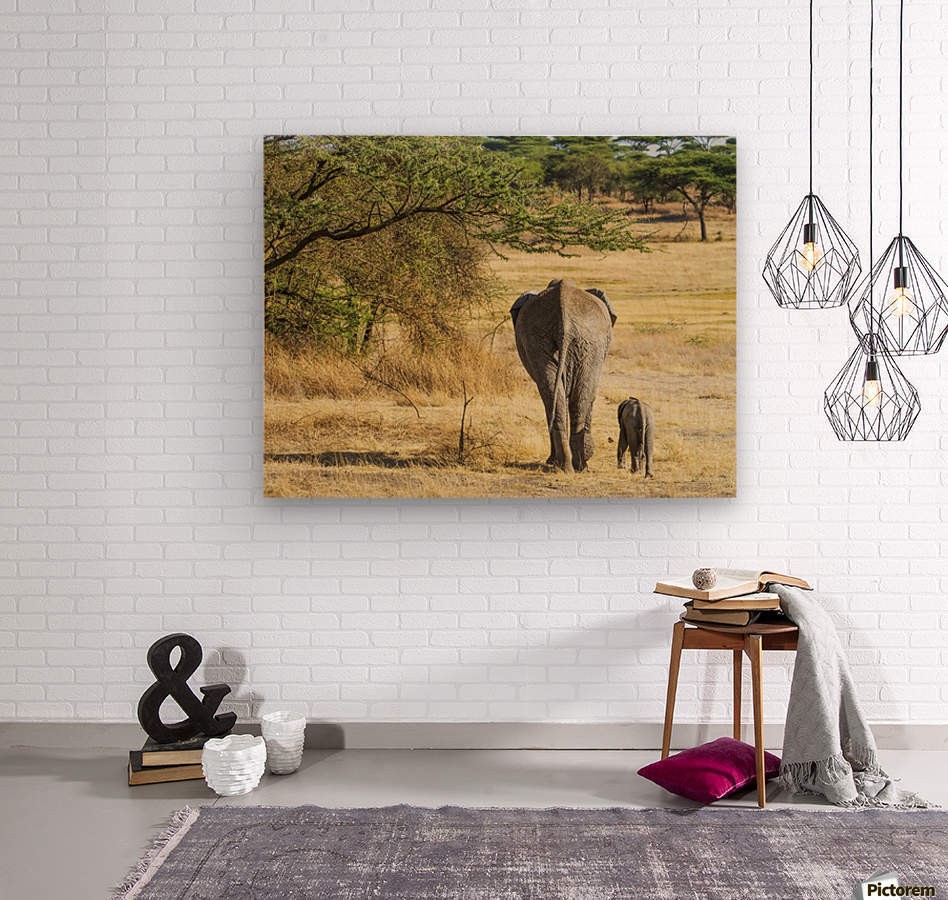 An African Elephant with it's young; Tanzania  Wood print