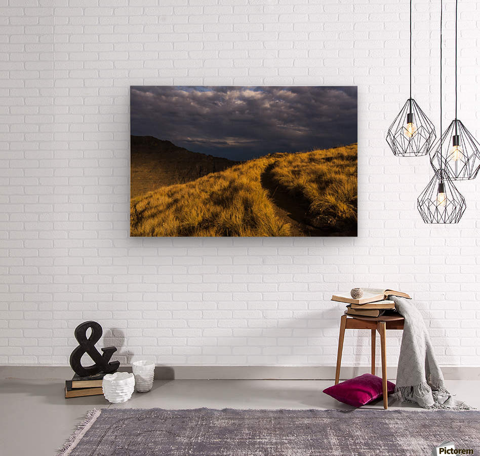 Evening sun highlights Kiger Gorge at Steens Mountain; Frenchglen, Oregon, United States of America  Wood print