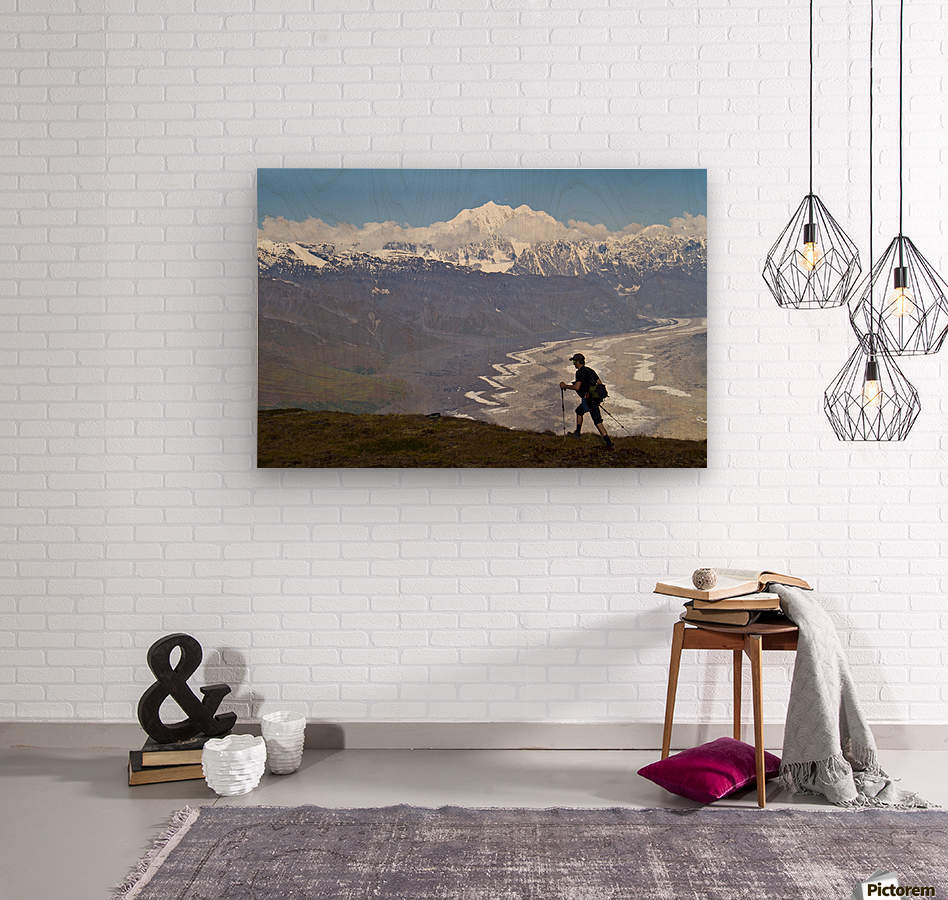 Silhouette Of A Man Hiking In The Tokosha Mountains Above The Tokositna Glacier With Mt. Hunter And The Alaska Range In The Background, Denali National Park & Preserve, Interior Alaska, Summer  Wood print