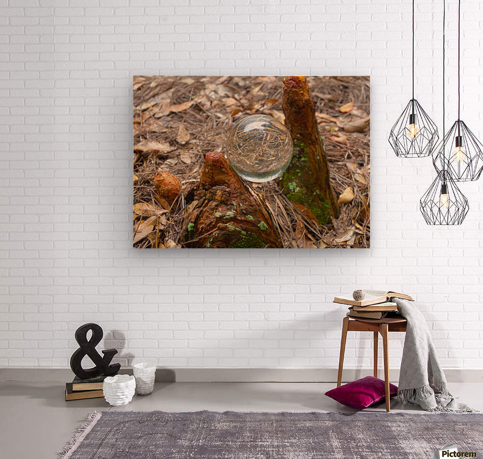 HDR CRYSTAL BALL BETWEEN TWO CYPRESS KNEES  Wood print