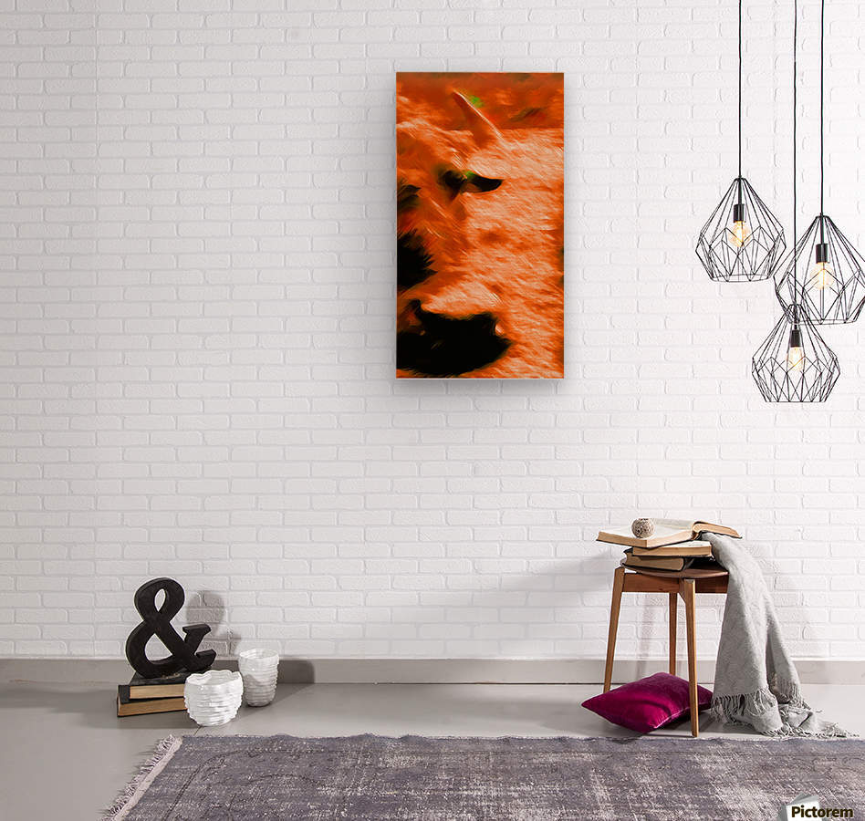 Büffeln  Wood print
