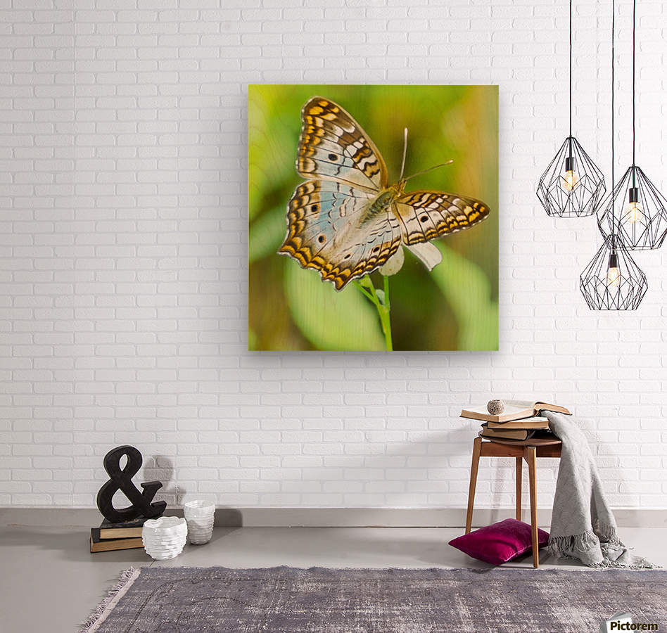 Psychedelic White Peacock Butterfly  Wood print