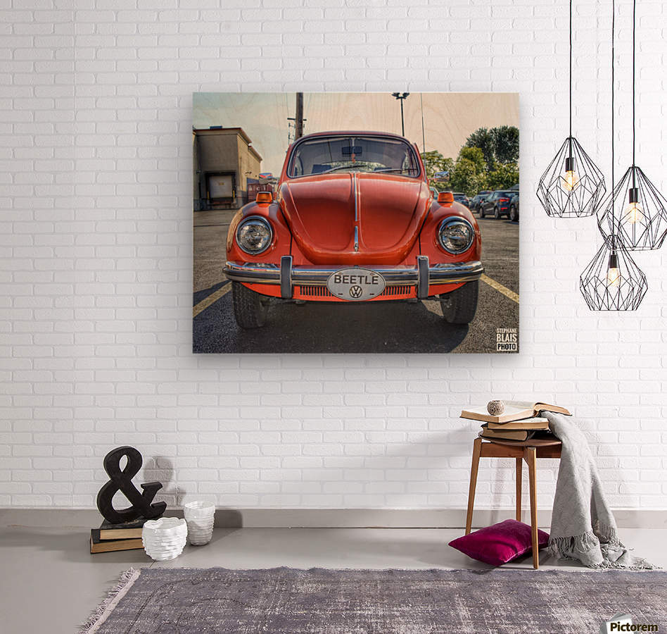 Orange Beetle  Wood print