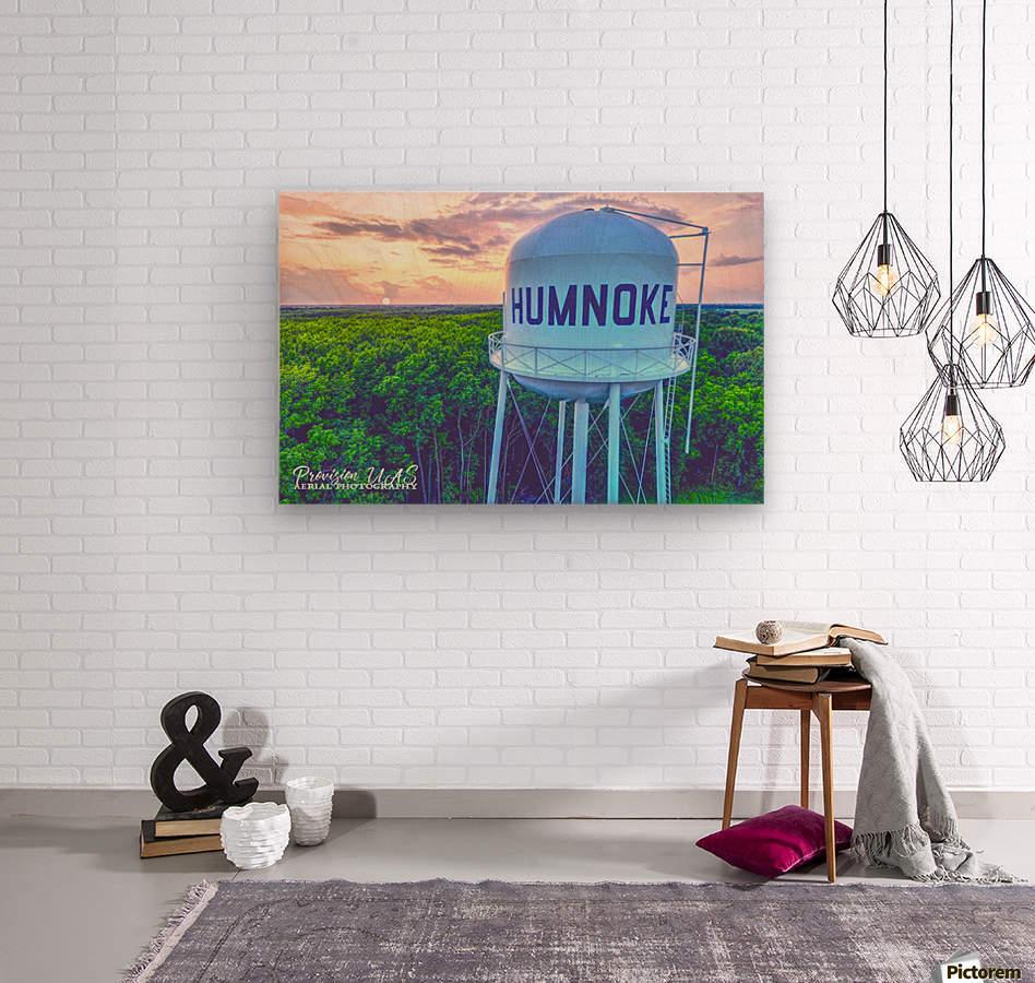 Humnoke, AR | Water Tower  Wood print