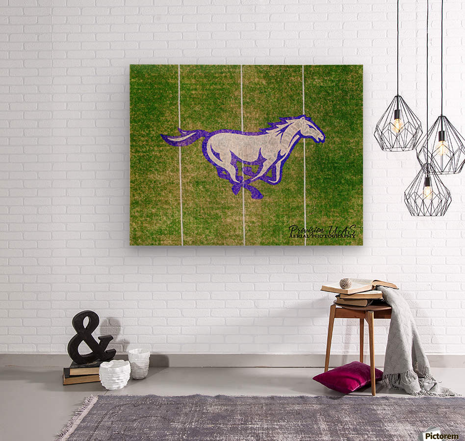 North Little Rock, AR | CAC Mustang  Wood print