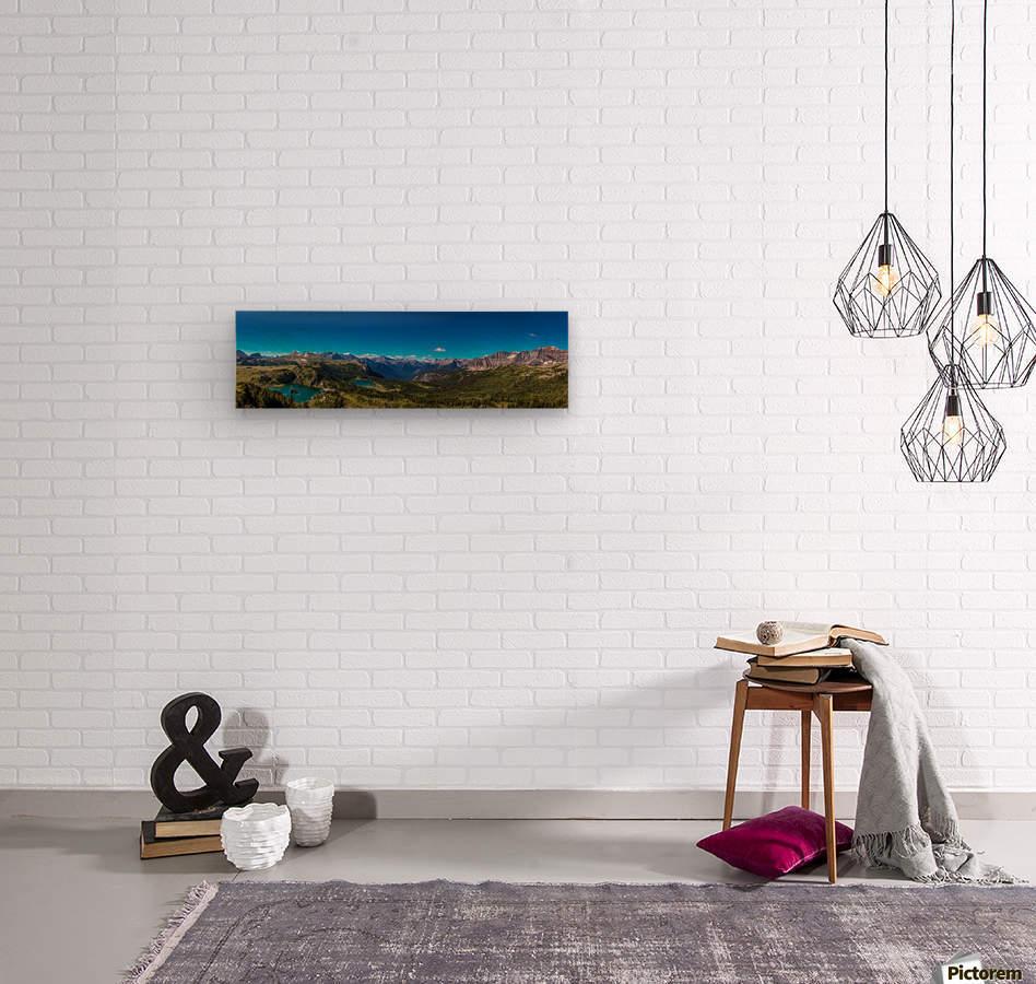 Sunshine Meadows  Wood print