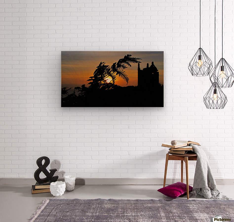 Fern castle sunset  Wood print
