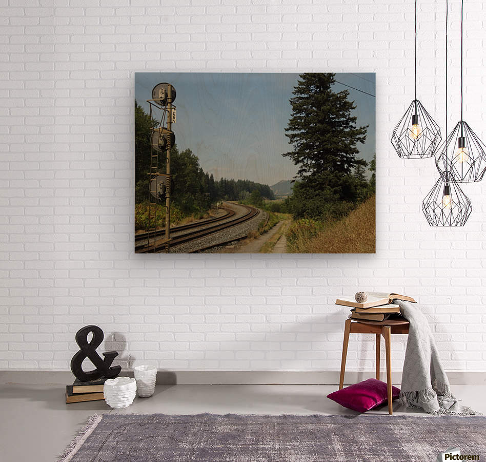 Riding The Rails  Wood print