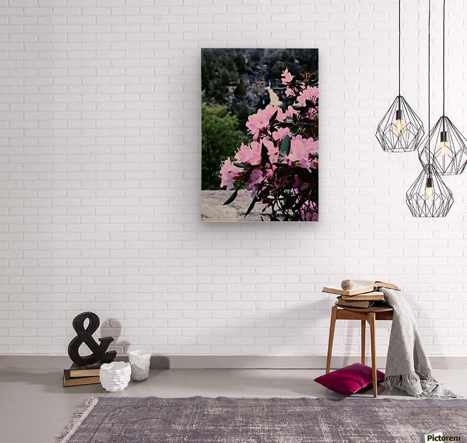 Flowers and Falls  Wood print