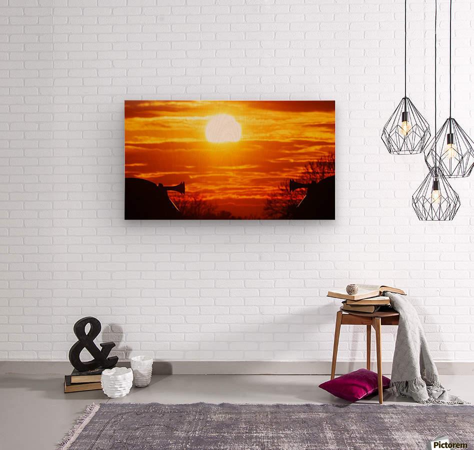 Train horn sunset  Wood print