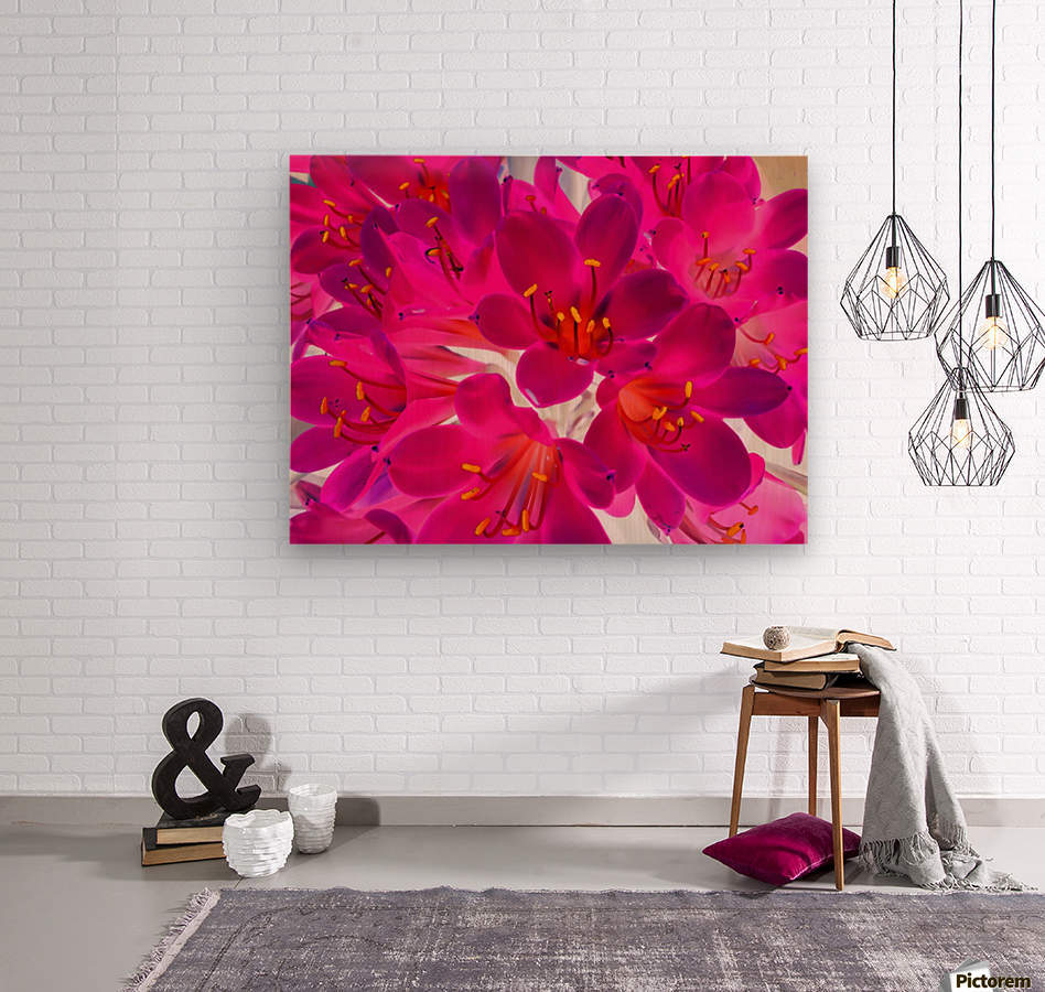 closeup pink flower texture abstract background with orange pollen  Wood print