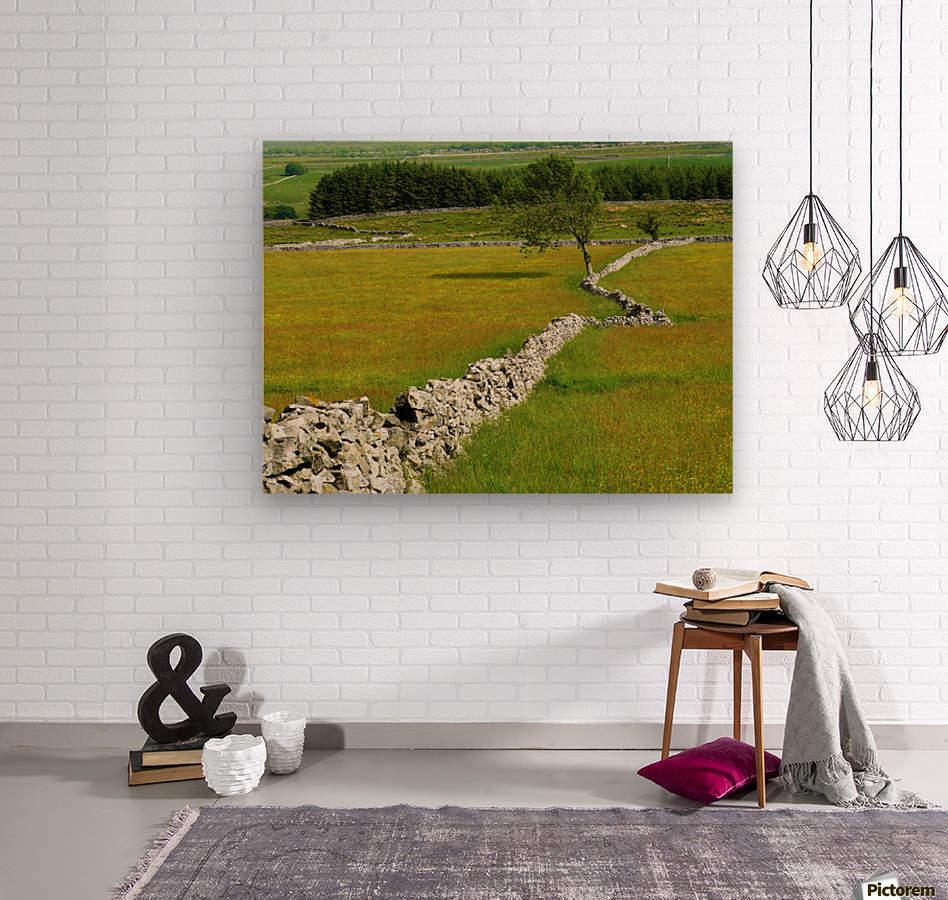 Kink in the wall  Wood print