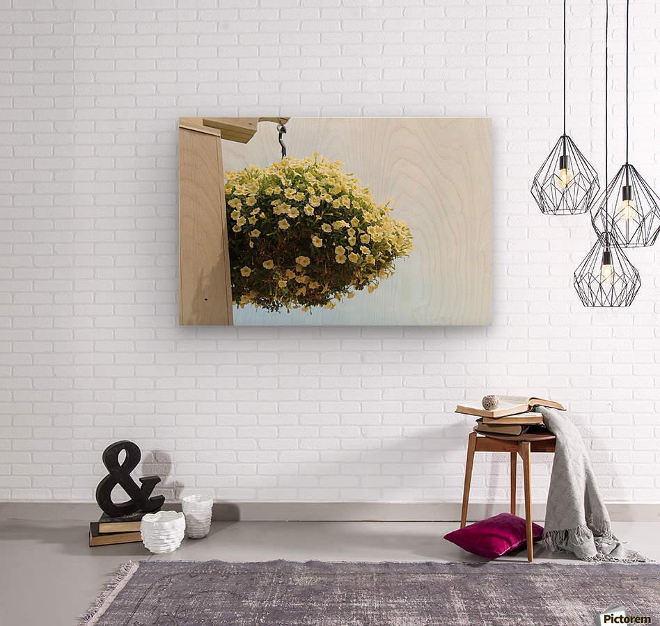 Flower in South Dakota  Wood print