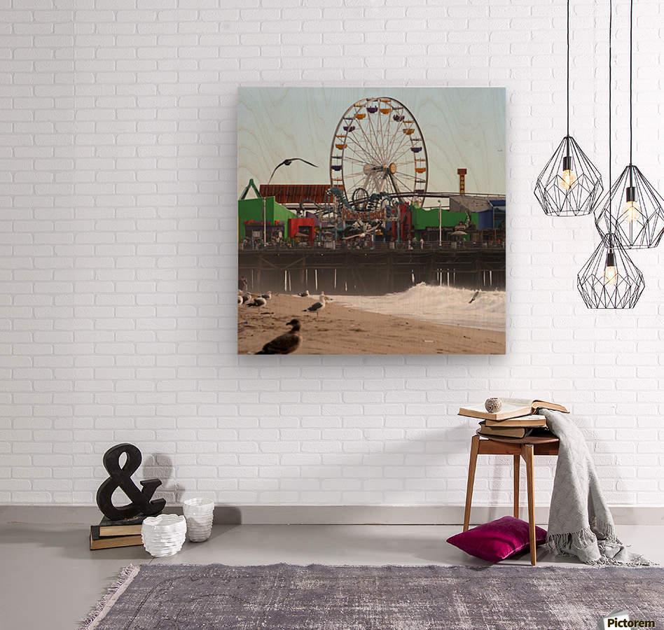 Sea Gulls & Santa Monica Pier  Wood print