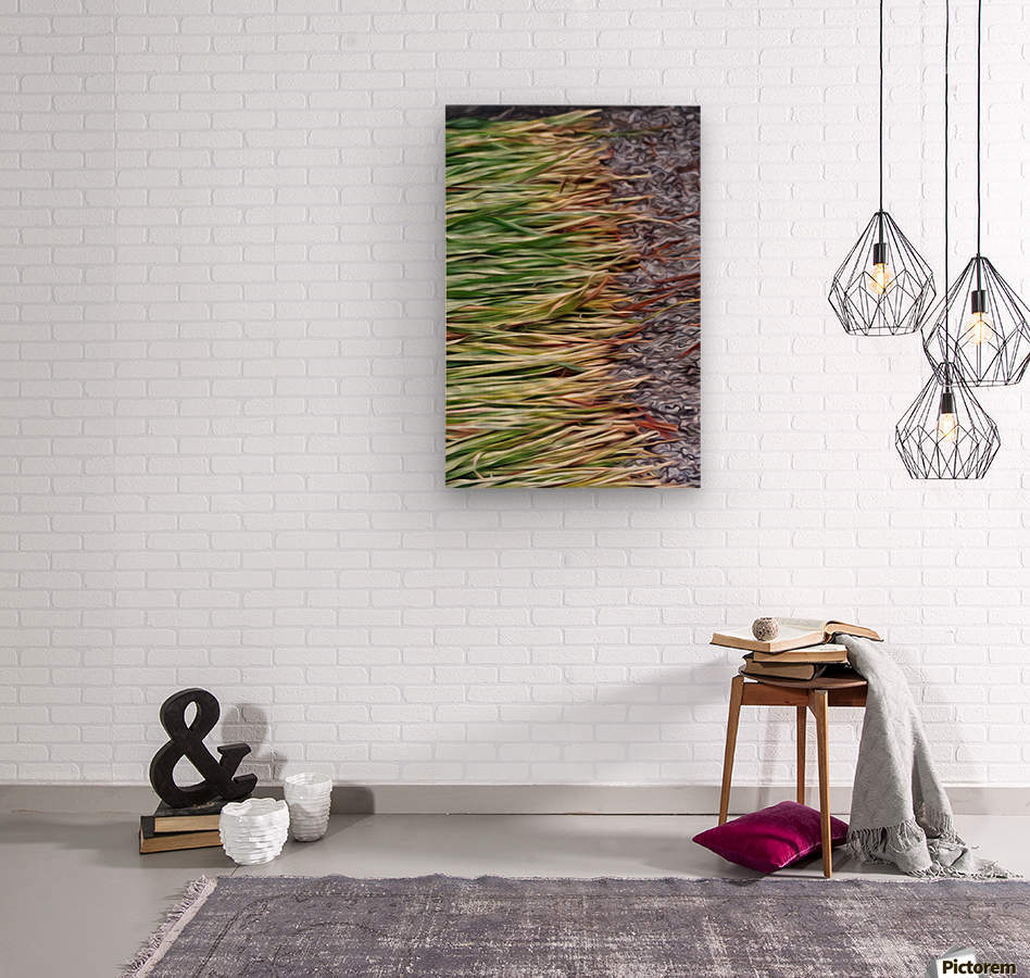 Cut Grass and Pebbles  Wood print