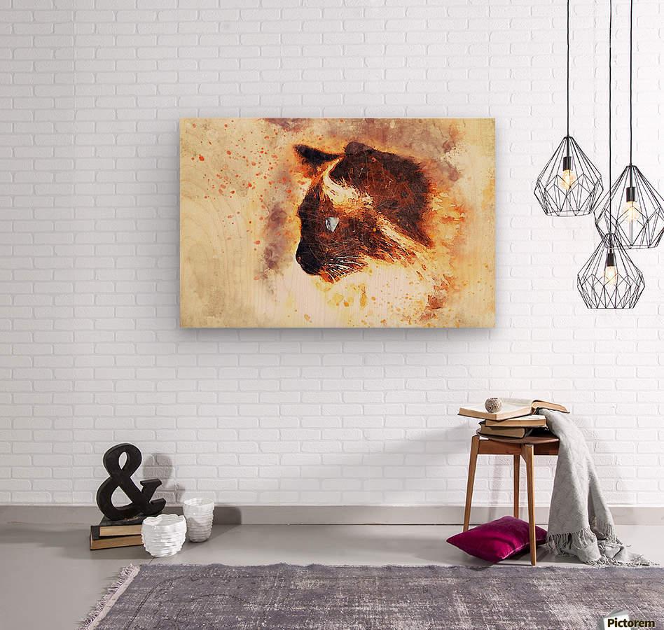 cat 2719594  Wood print