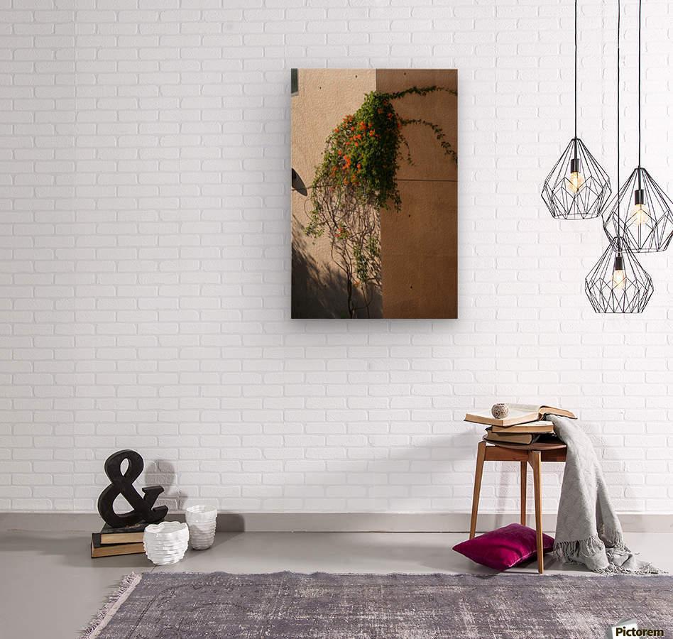 Wall Vines on Edge  Wood print